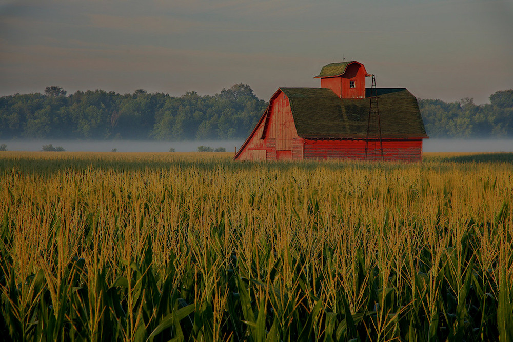 farm and crop insurance in Indianapolis or Martinsville STATE | Killion and Hall